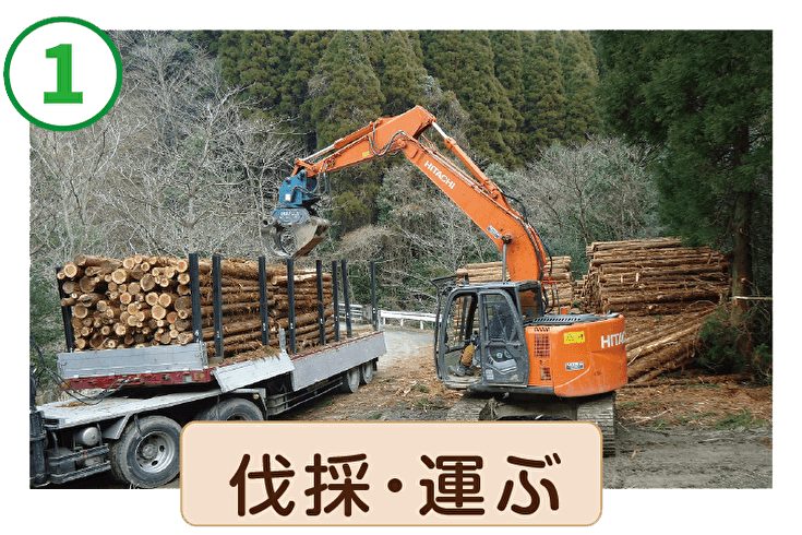 伐採・運ぶ